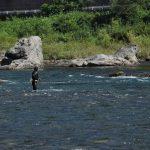 清流長良川が世界農業遺産に認定されました!