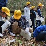 2016年4月5日 牧谷小学生がカタクリの花を見学しました。