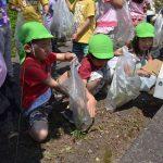 2016年5月23日 ツアー・オブ・ジャパンを前にかえで保育園園児が清掃活動