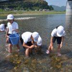 2016年5月20日 中有知小学校の児童が川の総合学習を行いました