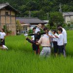 2016年7月8日 大矢田小学校でかかし作りが行われました