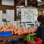 2016年11月20日 みちくさ館で柿まつりが開かれました