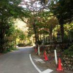 美濃市観光協会 作田です。
