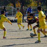 2016年11月23日 第6回越前美濃街道少年サッカー大会が行われました。