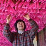 2017年1月18日 双葉紙業でみこしの花染めが行われています