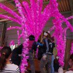 今週末、美濃市では『美濃まつり』が開催されます。