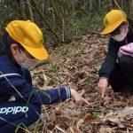 2017年4月6日 牧谷小学生がカタクリの花を見学しました。