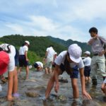 2017年6月26日 牧谷小学校の児童がカワゲラウォッチングを行いました