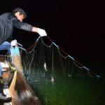 2017年6月15日 夜網漁が解禁になりました