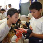2017年7月13日 牧谷小学校児童が虫送りを学びました