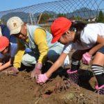 2017年10月27日 美濃小児童が芋掘り体験をしました