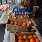 2017年11月19日 みちくさ館で柿まつりが開かれました
