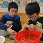 2017年12月13日 牧谷小学校6年生がコウゾのちりとりを行いました
