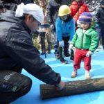 2018年2月25日 古城山ふれあいの森でしいたけホダ木づくり体験が開催されました