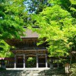 2018年4月20日 大矢田神社の新緑とシャガの花が見ごろを迎えています