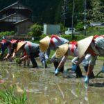 2018年5月20日 洲原神社で御田植祭・神送り祭が行われました