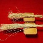 来る5月20日の御田植え祭で、植えます稲は[伊勢錦]という、餅米です。