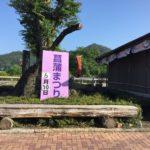 6月10日(日)は、曽代にある「みちくさ館」にて「菖蒲まつり」が開催されます。