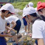 2018年6月25日 牧谷小学校児童がカワゲラウォッチングを体験しました