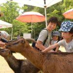 2018年6月9日 ふれあい動物園が開催されました