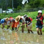 2019年5月19日 洲原神社で御田植祭と神送り祭が行われました