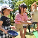 2019年5月25日 ふれあい動物園が開催されました