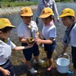 2019年6月3日 中有知小学校児童がカワゲラウォッチングを体験しました
