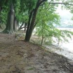 10号 台風の影響で長良川の水位が上がり、神社も一部避難